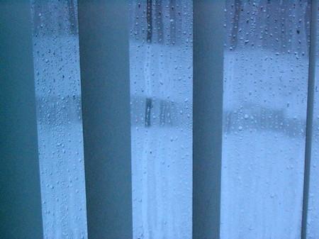 Snowday_008_1